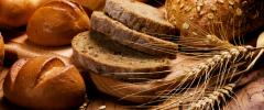 Il nostro pane quotidiano